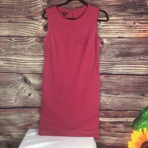 Talbots Women's 6P pink dress
